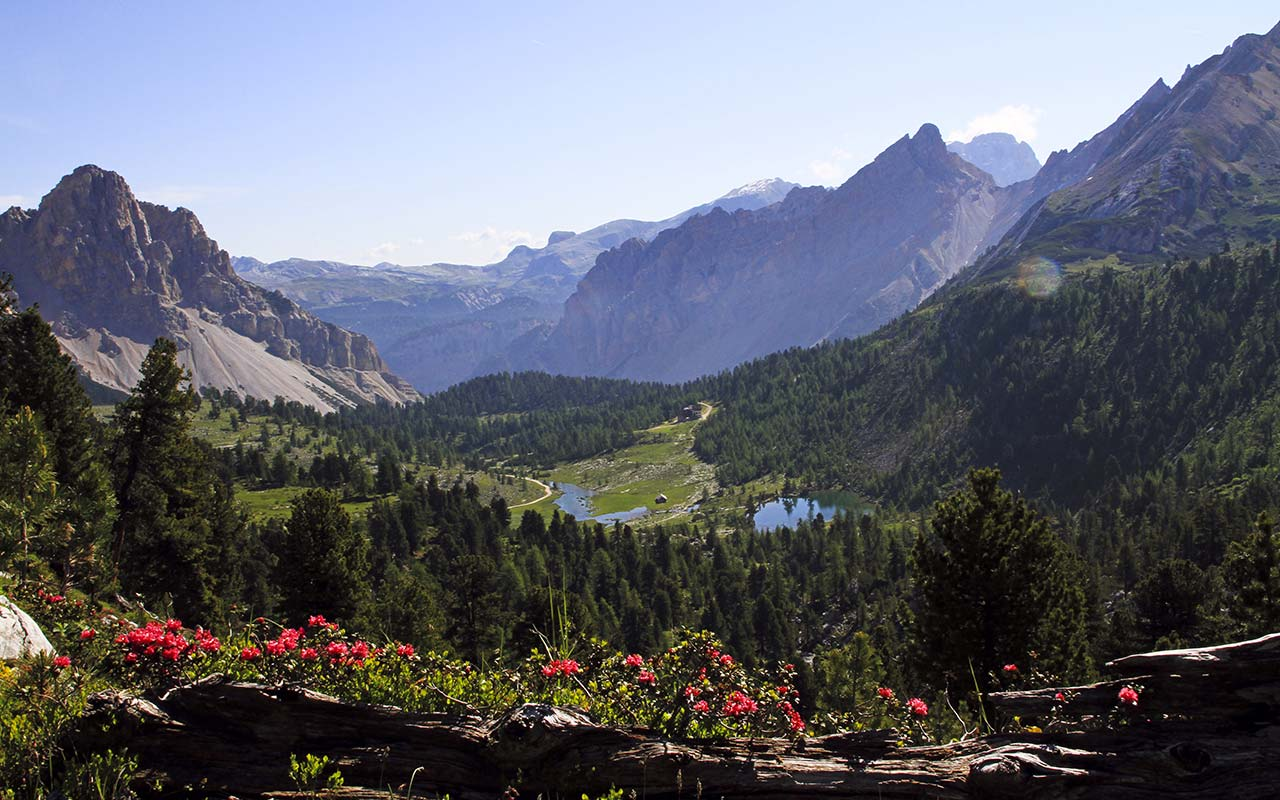 Panoramic view on the Dolomites in South Tyrol